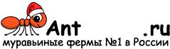 Муравьиные фермы AntFarms.ru - Саранск